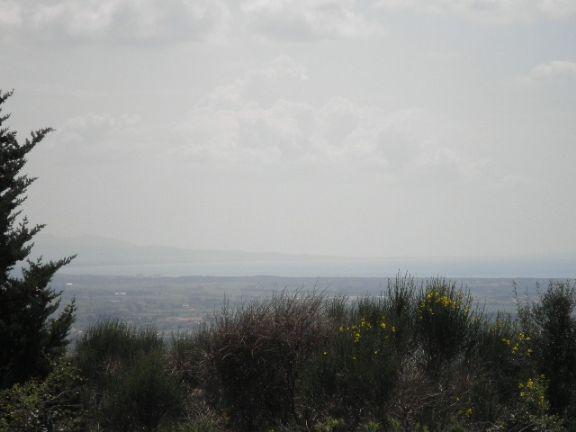 Foto 12/14 per rif. C2242