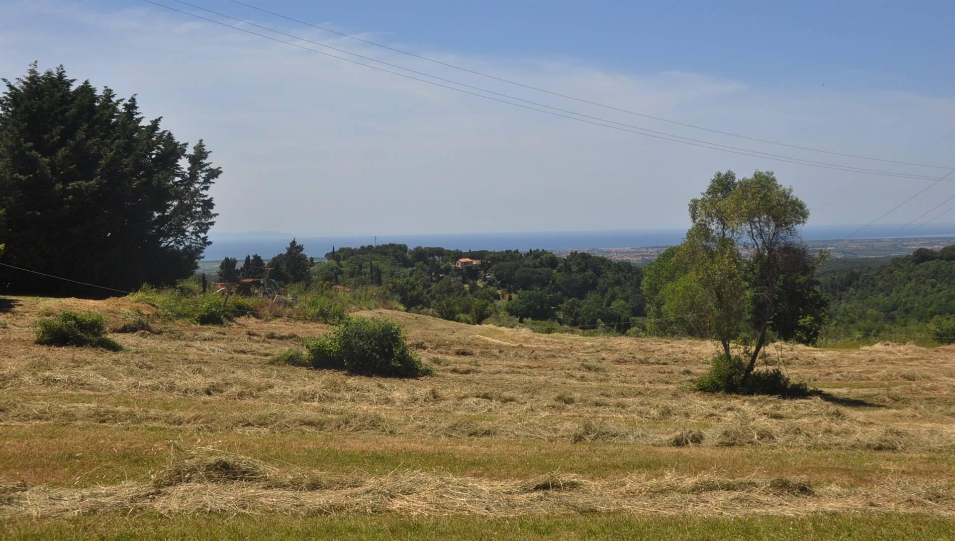 Terreno edif. residenziale in vendita a Guardistallo (PI)