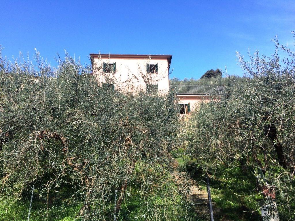 Terratetto in vendita a Matraia, Capannori (LU)