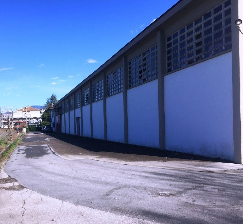Capannone industriale in vendita, rif. 01726