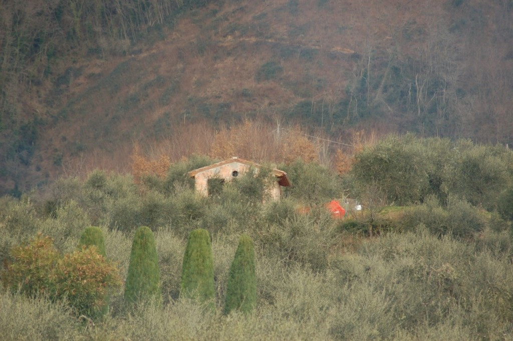 Villa singola in vendita, rif. 01983