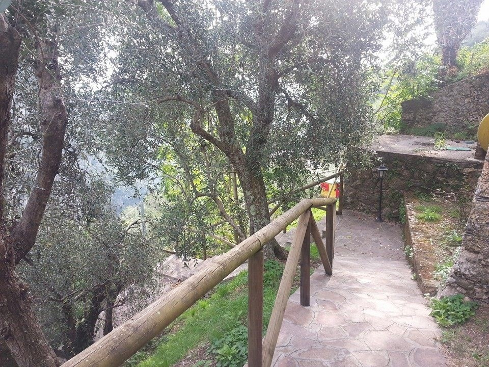 Villa singola in vendita - Camaiore
