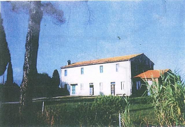 Azienda agricola in vendita a Coltano, Pisa