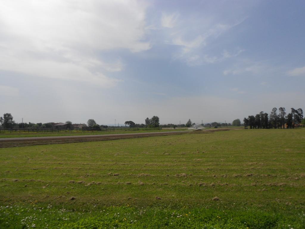 Azienda agricola in vendita, rif. AZ/24