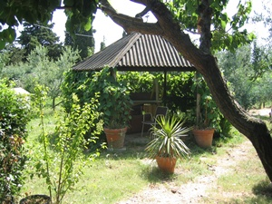 Agricultural plot for sale in Follonica (GR)