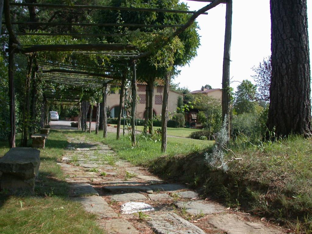 Colonica - Bientina (29/129)