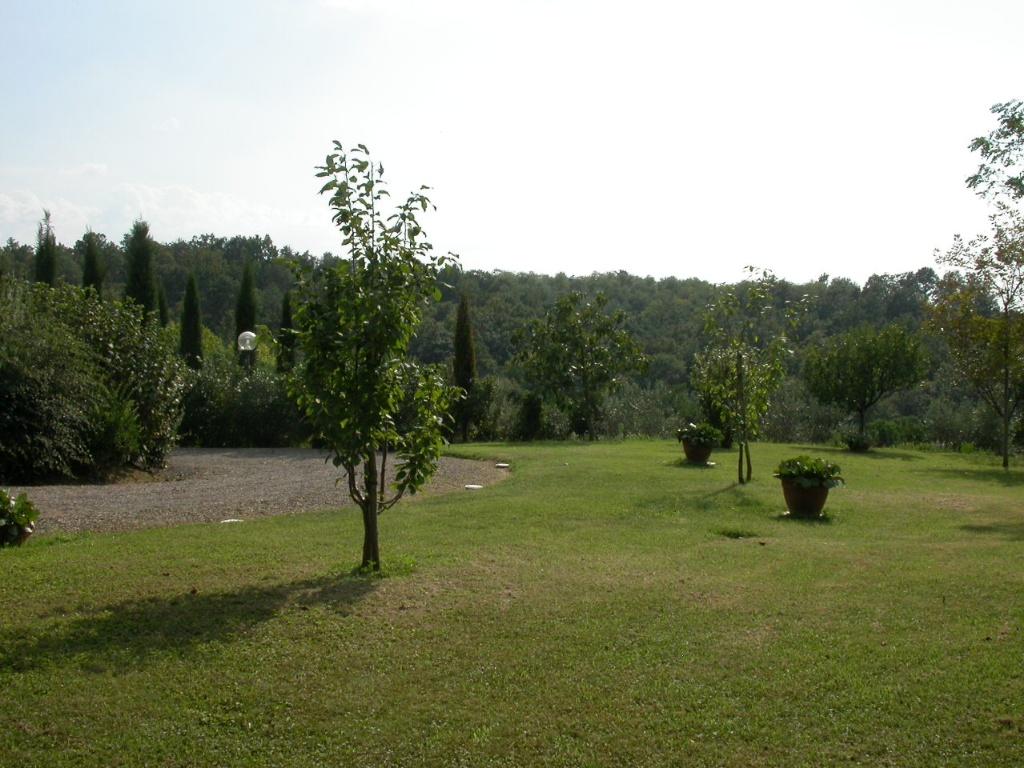 Colonica - Bientina (113/129)