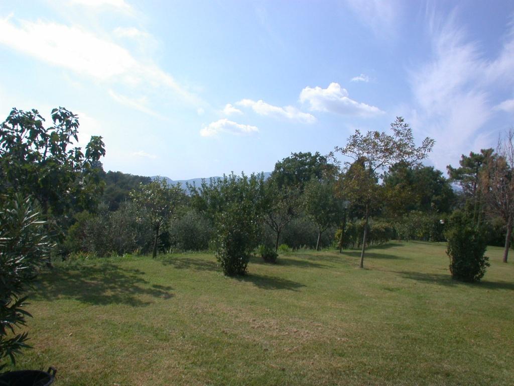 Colonica - Bientina (25/129)