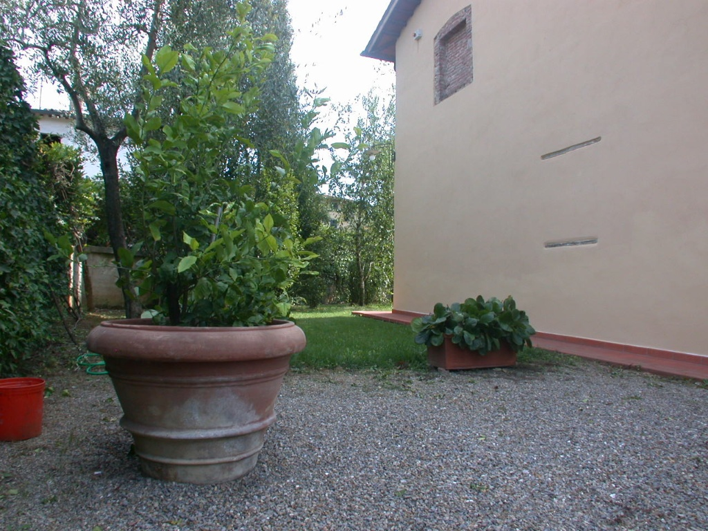 Colonica - Bientina (9/129)