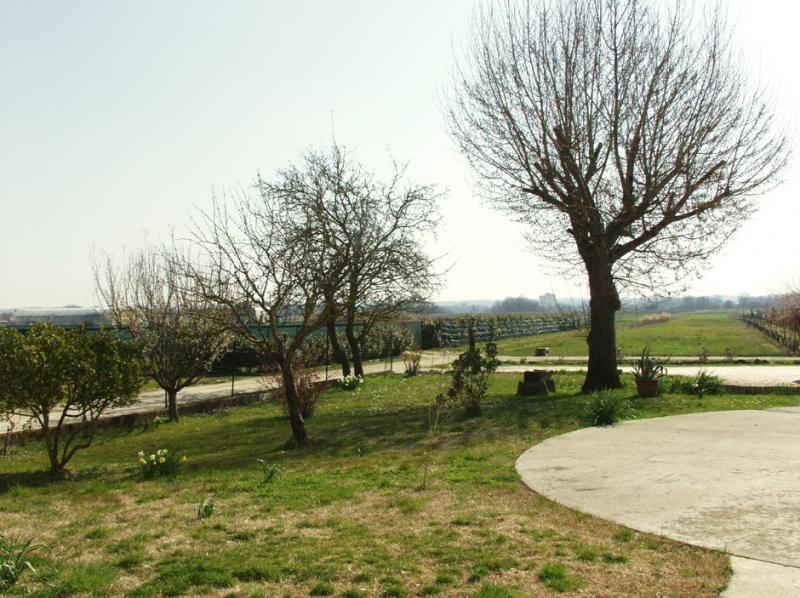 Agriturismo - Buti (14/16)
