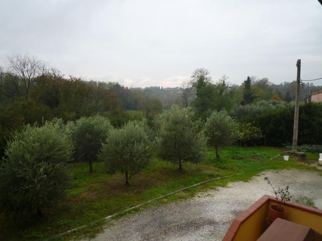 Colonica - Melone, Santa Maria a Monte (11/30)