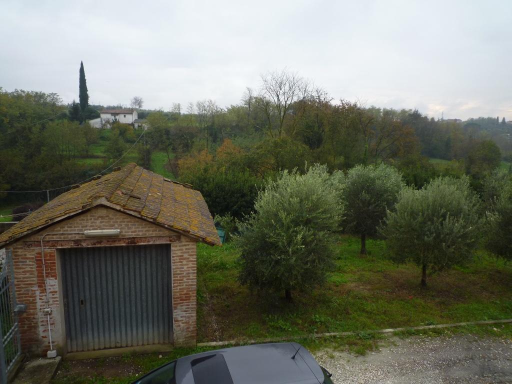 Colonica - Melone, Santa Maria a Monte (10/30)