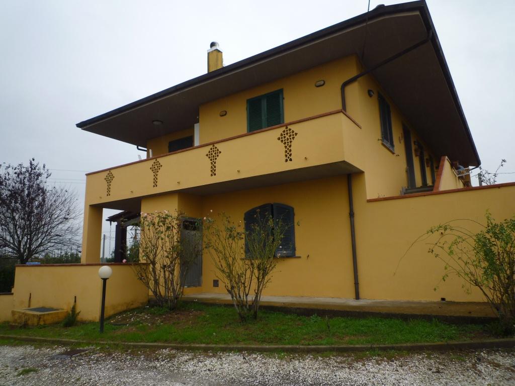Colonica - Melone, Santa Maria a Monte (4/30)