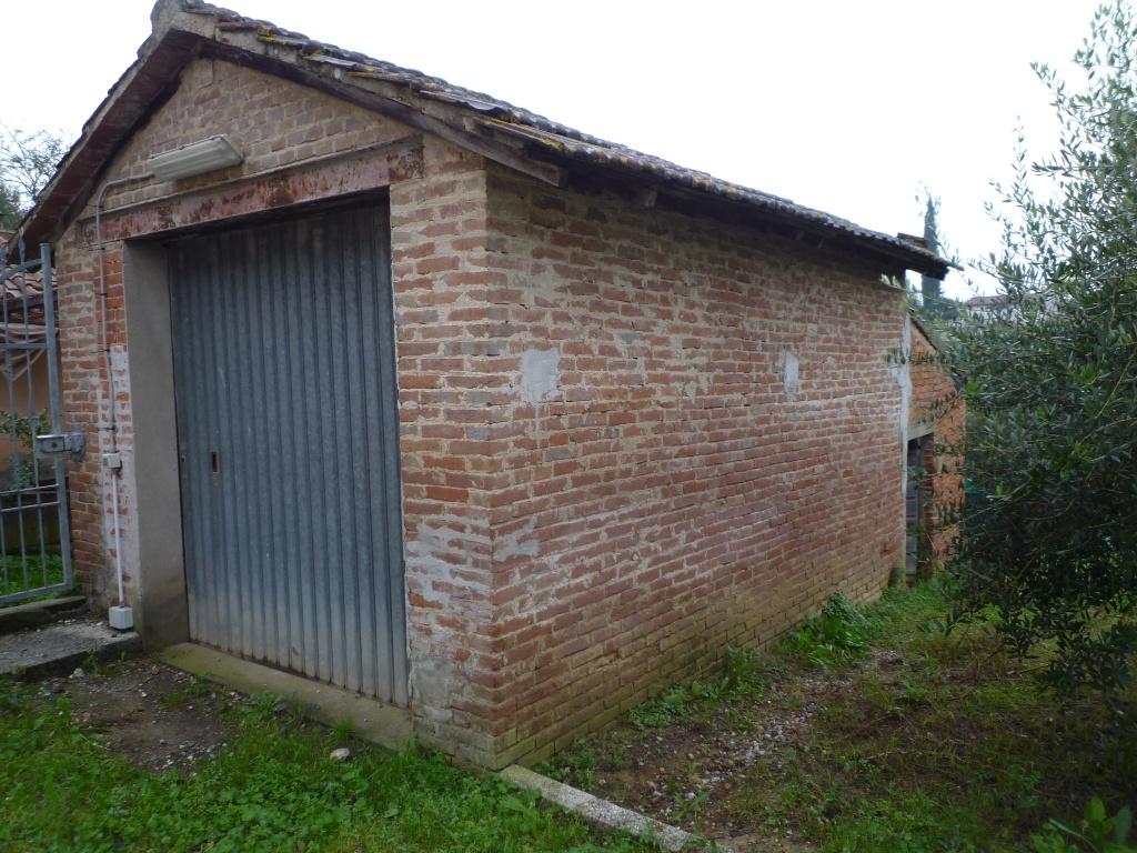 Colonica - Melone, Santa Maria a Monte (9/30)