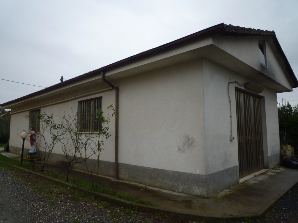 Colonica - Melone, Santa Maria a Monte (8/30)