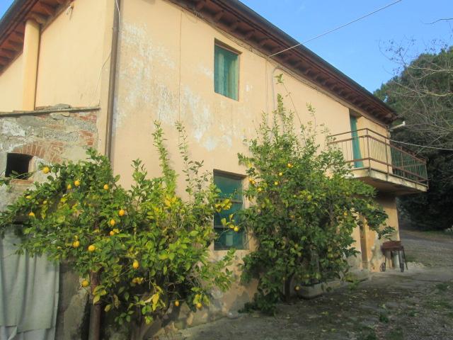 Azienda agricola in vendita a Crespina, Crespina Lorenzana (PI)