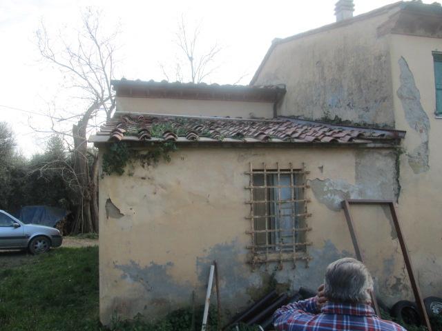 Azienda agricola in vendita, rif. T/16