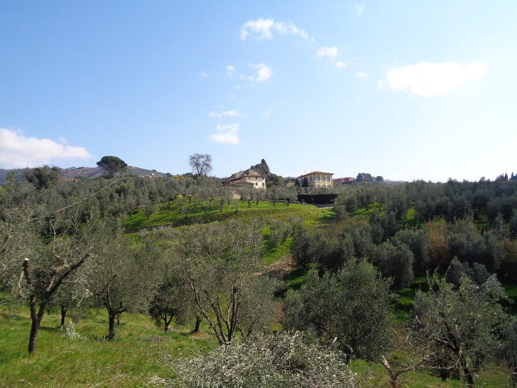 Terreno agricolo a Lamporecchio