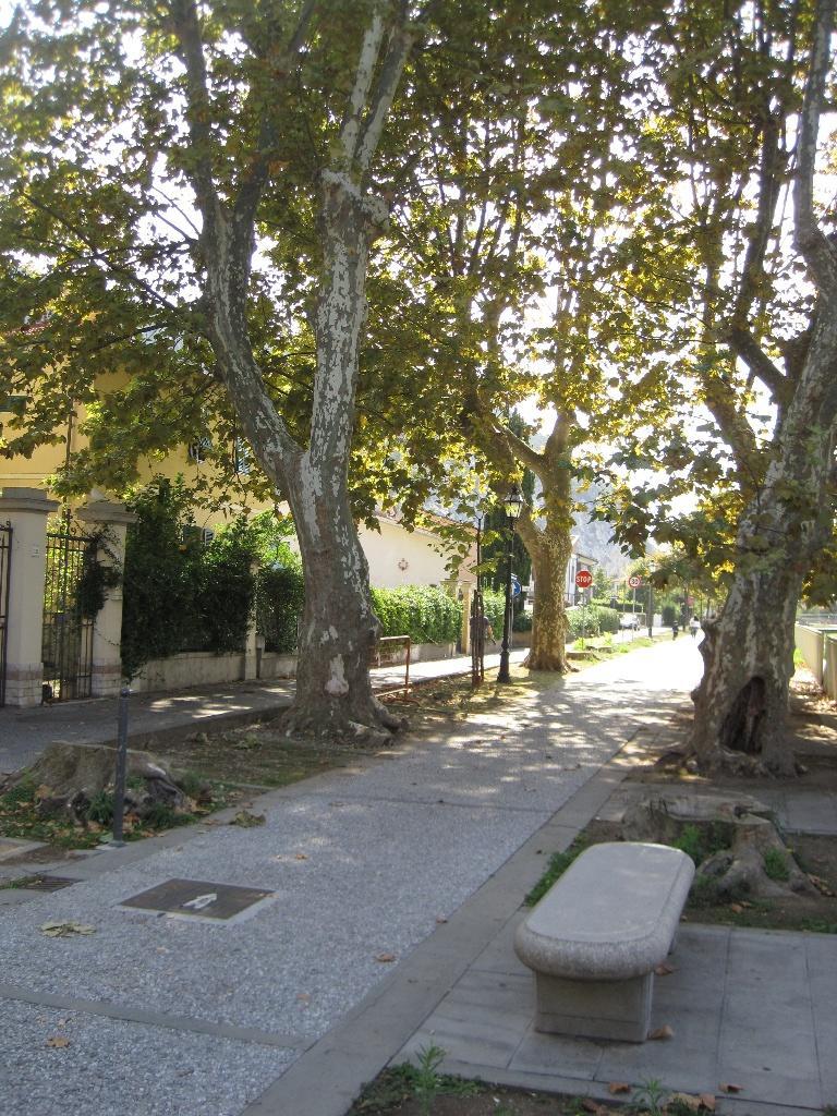 foto carosello 34618072