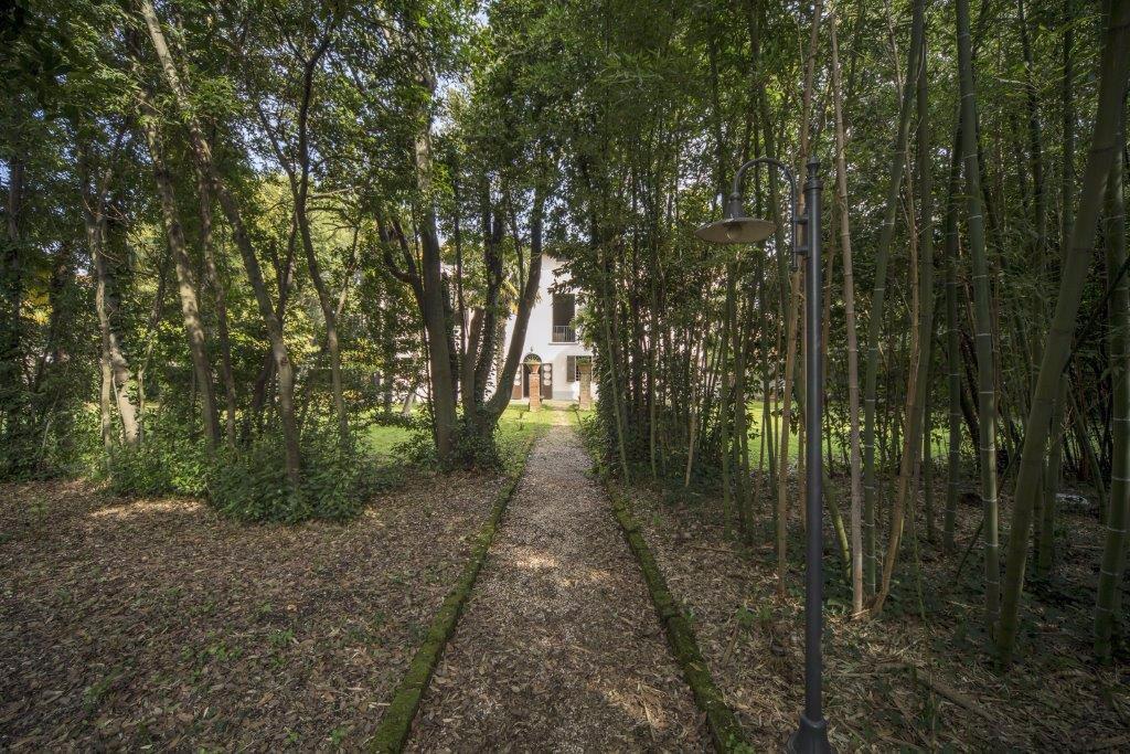 Villa singola - Pisa (4/15)