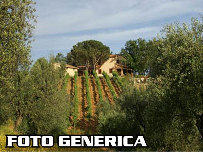Azienda agricola in vendita a Peccioli (PI)