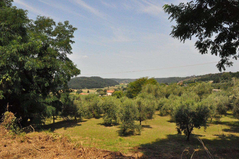 Terreno edif. residenziale in vendita a Crespina Lorenzana (PI)