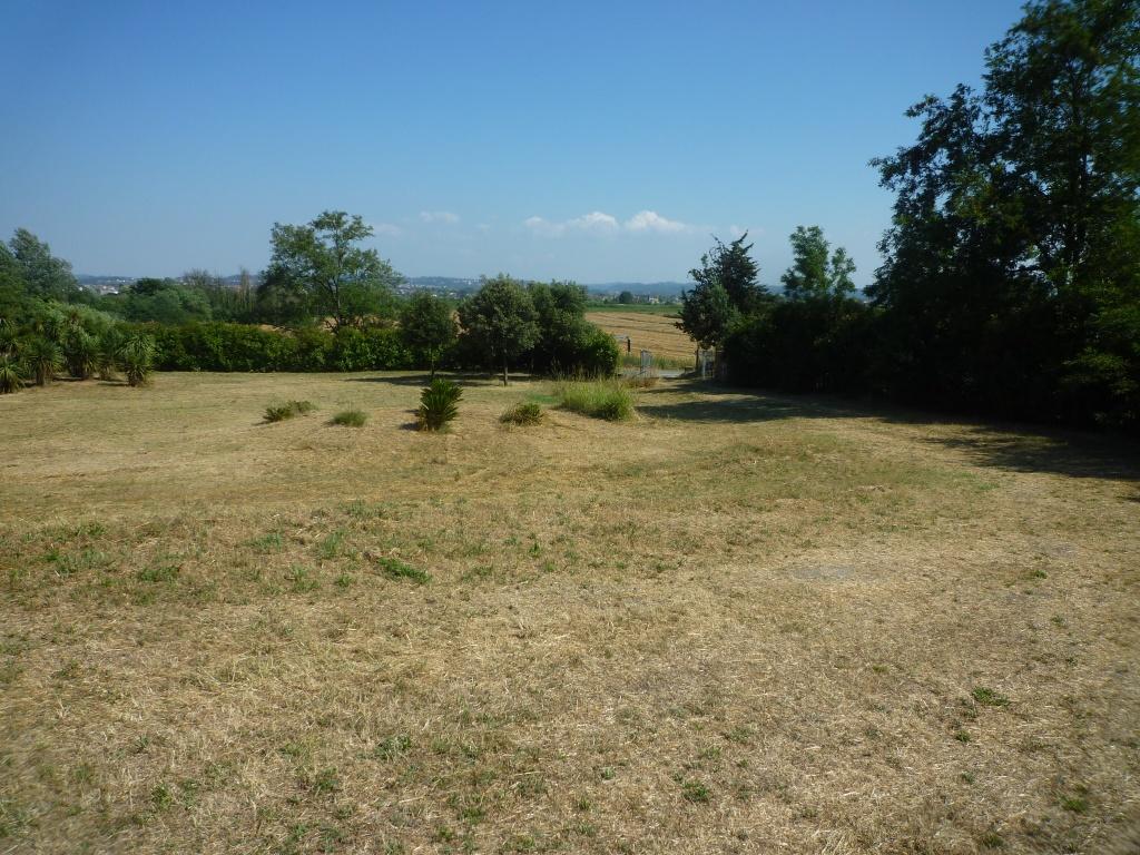 Colonica - Castelfranco di Sotto (34/34)