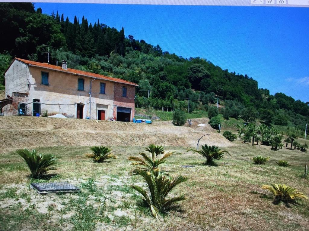 Colonica - Castelfranco di Sotto (2/34)