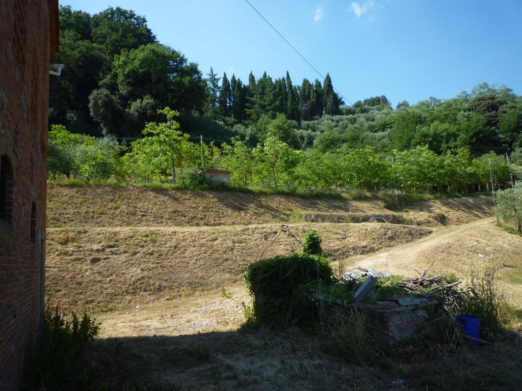 Colonica - Castelfranco di Sotto (18/34)