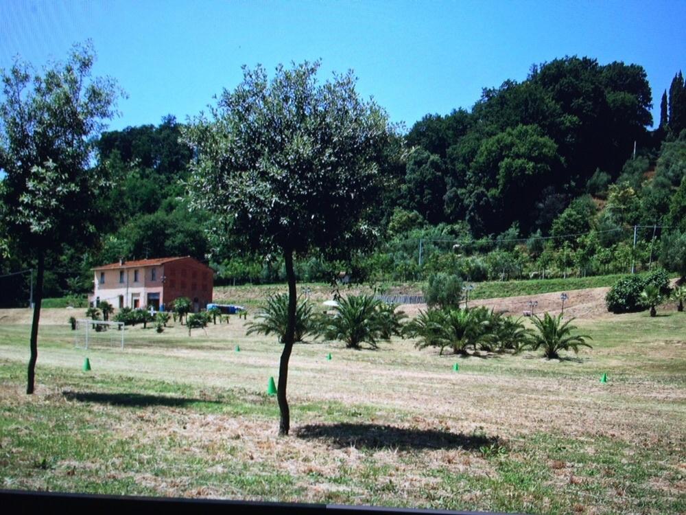 Colonica - Castelfranco di Sotto (9/34)