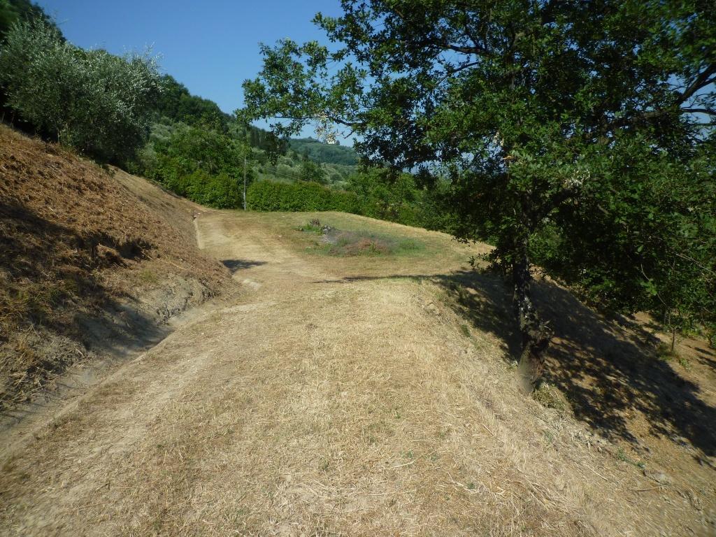 Colonica - Castelfranco di Sotto (23/34)