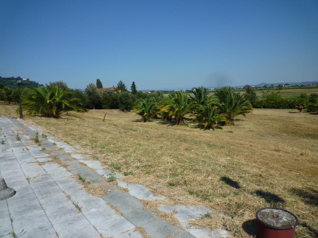 Colonica - Castelfranco di Sotto (19/34)