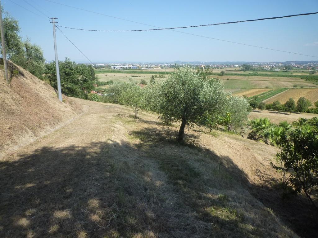 Colonica - Castelfranco di Sotto (29/34)