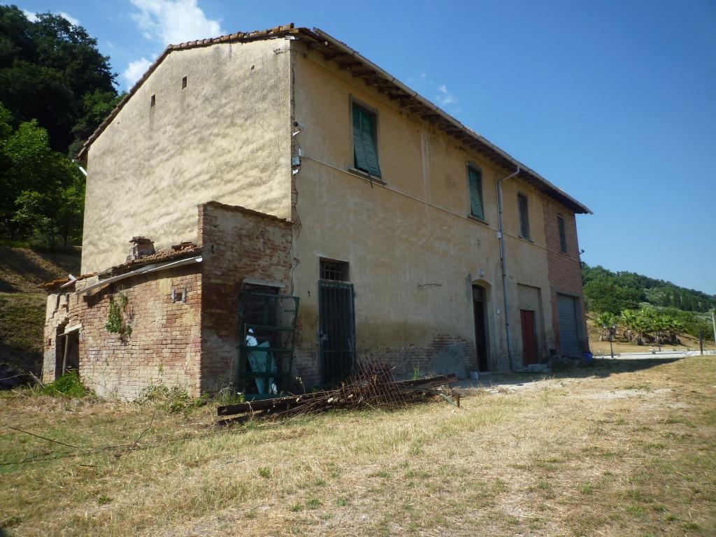 Colonica - Castelfranco di Sotto (33/34)