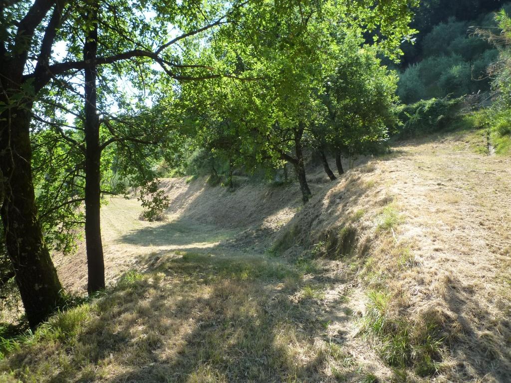 Colonica - Castelfranco di Sotto (27/34)