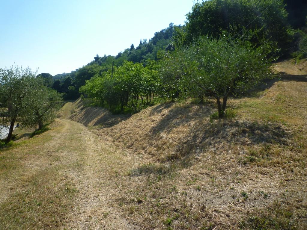 Colonica - Castelfranco di Sotto (25/34)