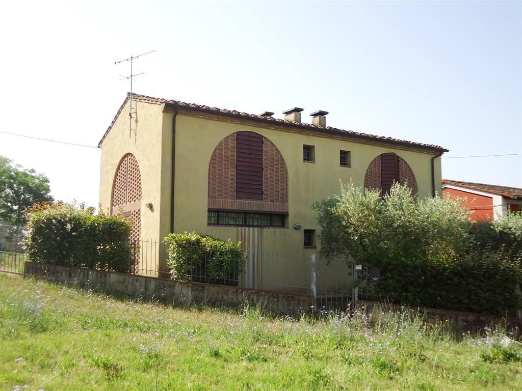 FIENILE in Vendita a Castelfiorentino (FIRENZE)