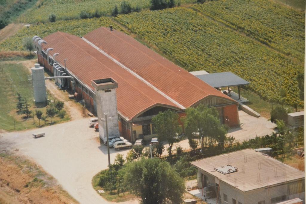 Capannone industriale in locazione a Casciana Terme Lari (PI)