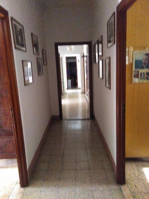 Foto 11/11 per rif. SS135