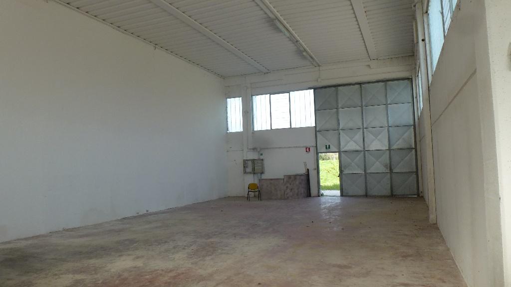 Capannone artigianale in locazione a Ponsacco (PI)