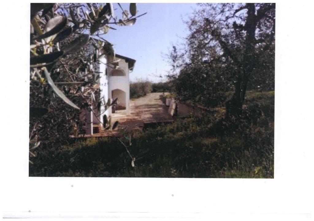 Foto 6/10 per rif. 918