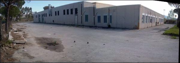 Capannone industriale in locazione a Vecchiano (PI)