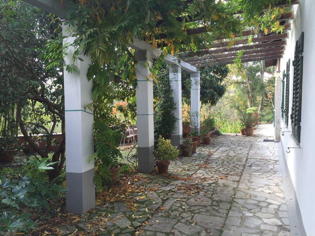 Villa in vendita a Santa Maria a Monte, 6 locali, prezzo € 249.000   Cambio Casa.it