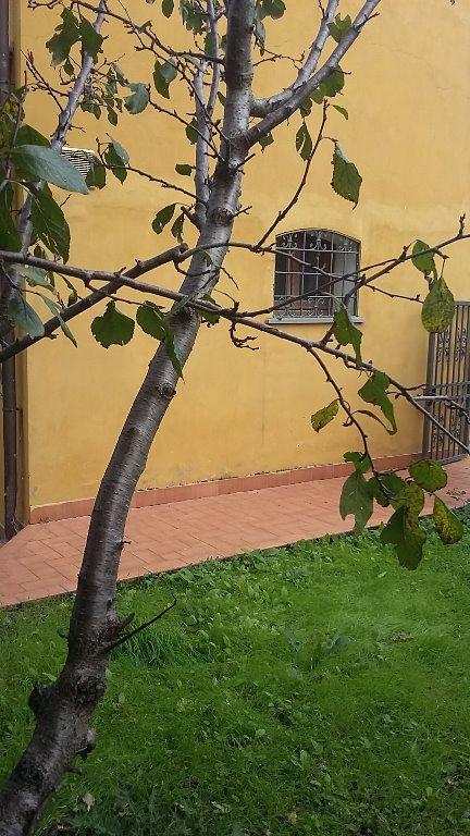 Soluzione Indipendente in vendita a Montopoli in Val d'Arno, 4 locali, prezzo € 130.000 | Cambio Casa.it