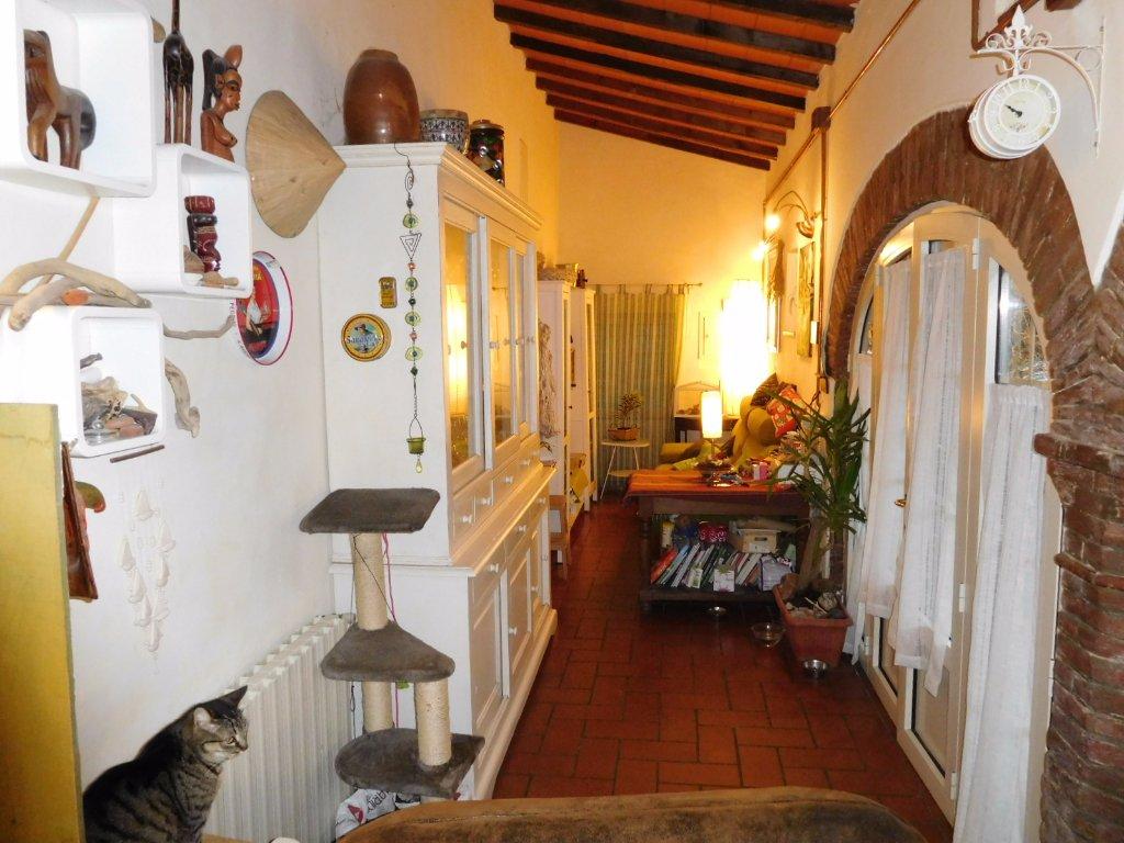 Viareggina in vendita a Vicopisano (PI)