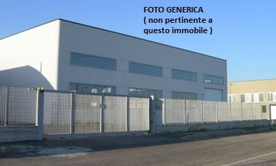 Capannone industriale in locazione a Vicopisano (PI)