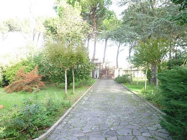 Villa singola - Calcinaia (5/6)