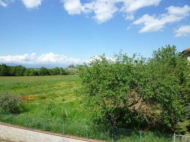 Villa singola - Santa Maria a Monte (27/51)