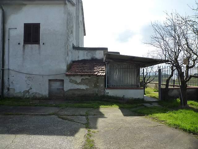 Colonica - Montecalvoli Basso, Santa Maria a Monte (11/19)