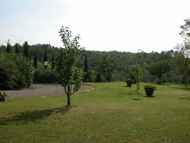 Colonica - Bientina (7/129)